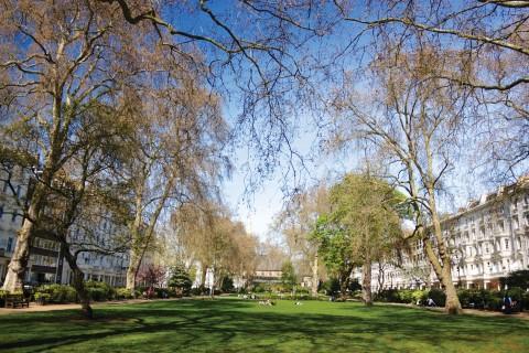Properties for rent in Pimlico