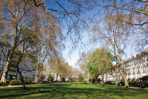 Properties for sale in Pimlico
